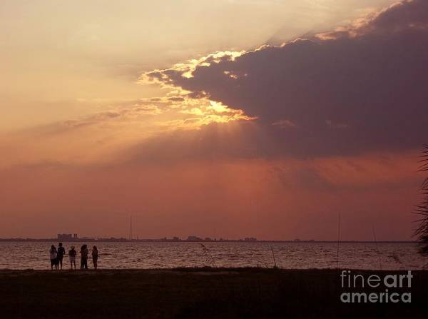 Photograph - Sunset Gathering by Gail Kent