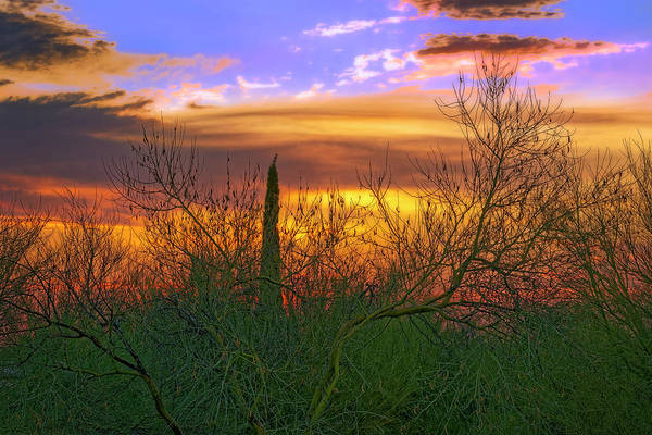 Photograph - Sunset H1833 by Mark Myhaver