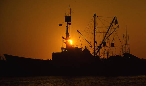Photograph - Sunset Harbor by Marie Leslie