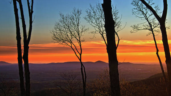Photograph - Sunset Hues by George Taylor