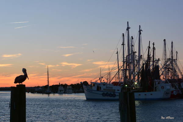 Photograph - Sunset In Beaufort by Dan Williams