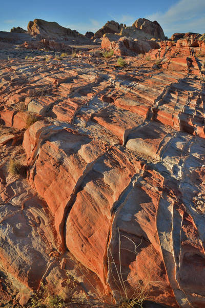 Photograph - Sunset In Colorful Valley Of Fire State Park by Ray Mathis