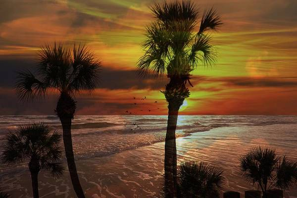 Accent Photograph - Sunset In Florida by Athala Carole Bruckner