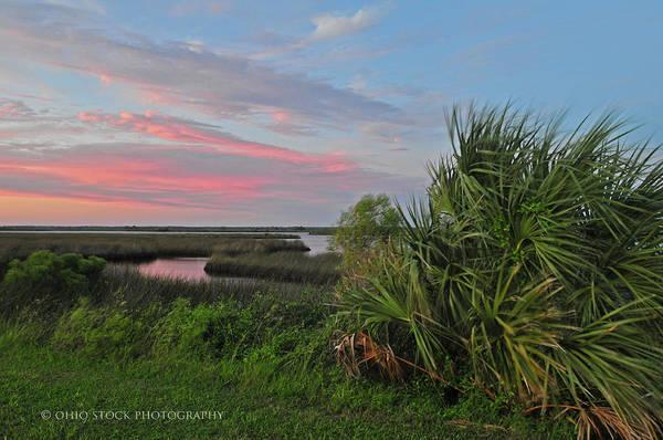 D32a-89 Sunset In Crystal River, Florida Photo Art Print