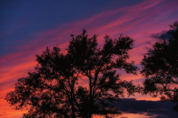 Photograph - Sunset In Omaha by Edward Peterson