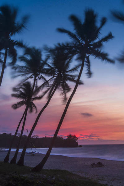 Photograph - Sunset In Paradise by Alex Lapidus