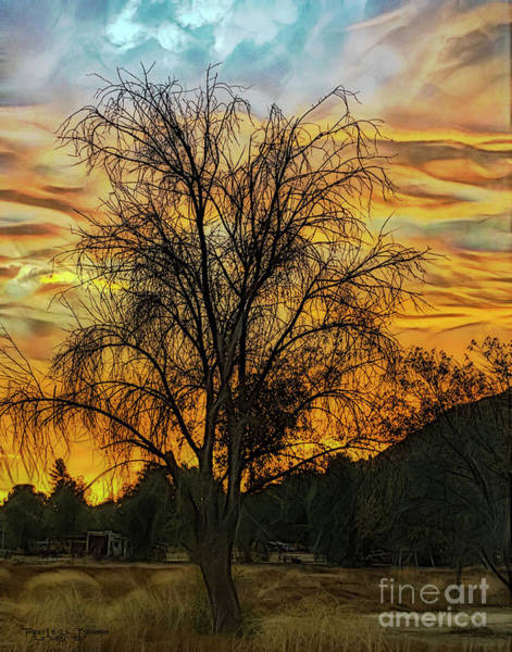 Digital Art - Sunset In Perris by Rhonda Strickland