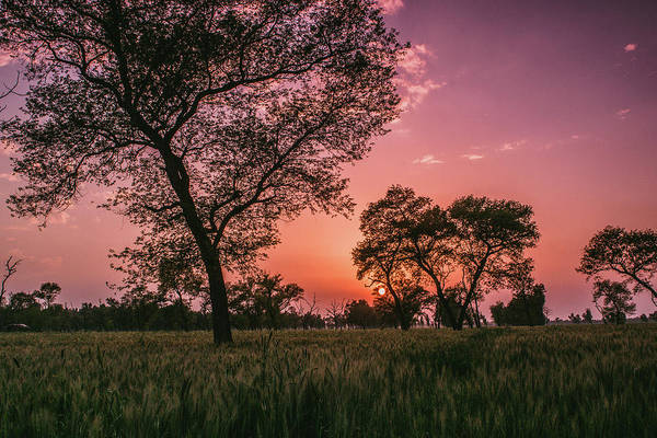 Wall Art - Photograph - sunset in rural India by Happy Home Artistry