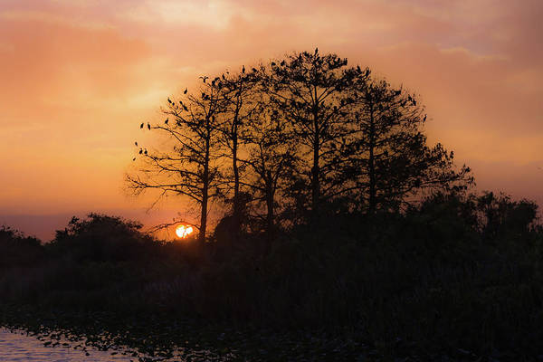 Alligator Alley Photograph - Sunset In The Everglades Wma by Joe Kopp