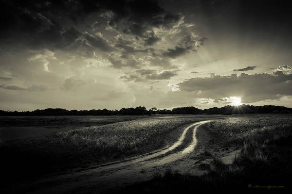 Backroad Wall Art - Photograph - Sunset Lane-bw by Marvin Spates