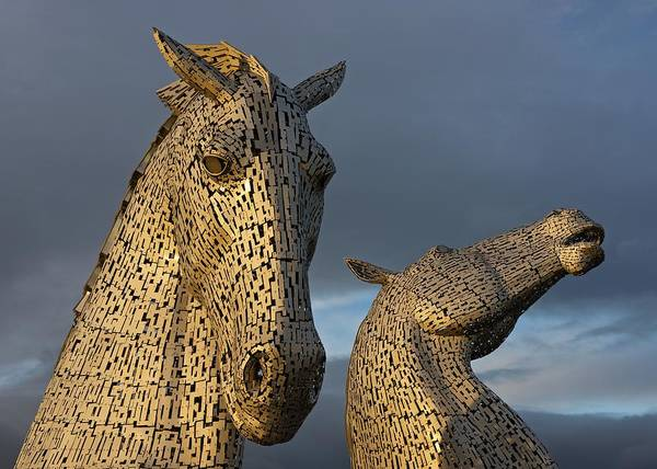 Photograph - Sunset Light At The Kelpies by Stephen Taylor