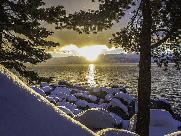 Photograph - Sunset Light Lake Tahoe by Martin Gollery
