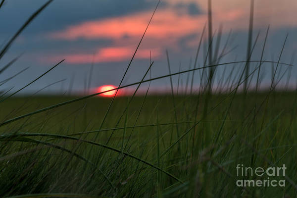 Photograph - Sunset Margate by Alissa Beth Photography