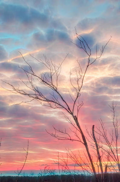 Photograph - Sunset Of Wanting by Beth Sawickie