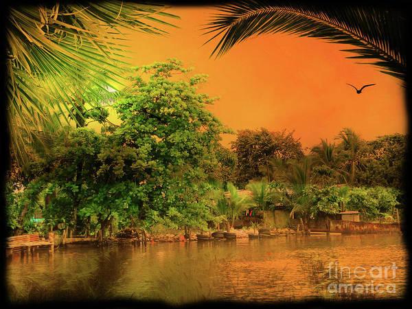 Wall Art - Photograph - Sunset On A Bocas Del Toro Beach, Panama by Al Bourassa