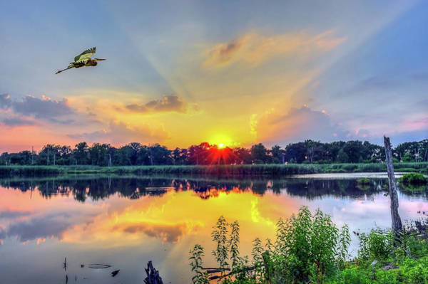 Photograph - Sunset On A Chesapeake Bay Pond by Patrick Wolf
