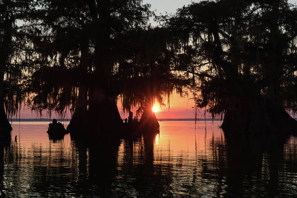 Bald Cypress Wall Art - Photograph - Sunset On A Louisiana Cypress Swamp by Bill Swindaman