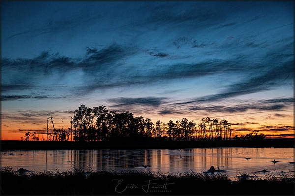 Photograph - Sunset On Blackwater Refuge by Erika Fawcett