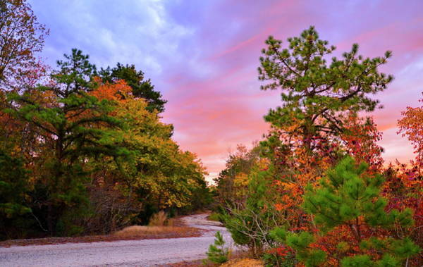 Photograph - Sunset On Bombing Run Road by Jim Cook