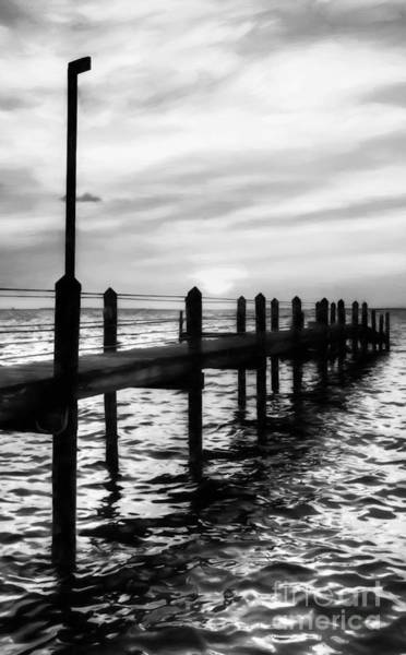 Photograph - Sunset On Islamorada # 4 Black And White by Mel Steinhauer