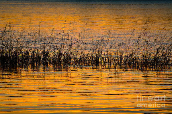 Wall Art - Photograph - Sunset On  Merrymeeting Bay by Susan Cole Kelly