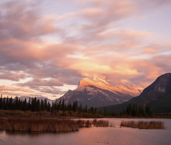 Photograph - Sunset On Mount Rundle by Alex Lapidus