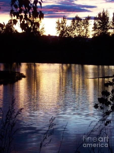 Sunset On River Art Print