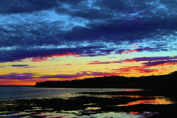 Photograph - Sunset On Seal Cove by Polly Castor