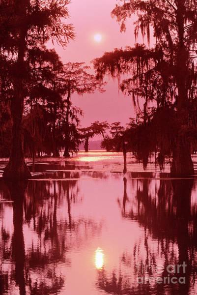 Photograph - Sunset On The Bayou Atchafalaya Basin Louisiana by Dave Welling