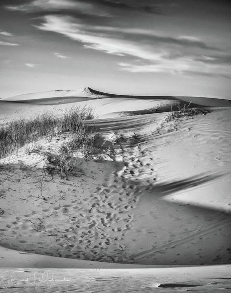 Photograph - Sunset On The Dunes by Carol Fox Henrichs