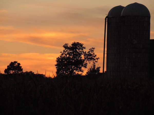 Wall Art - Photograph - Sunset On The Farm by Teresa Schomig