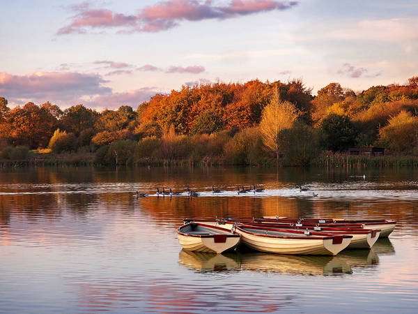 Photograph - Sunset On The Lake by Gill Billington
