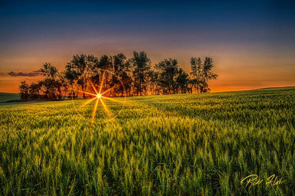 Photograph - Sunset On The Prairie by Rikk Flohr