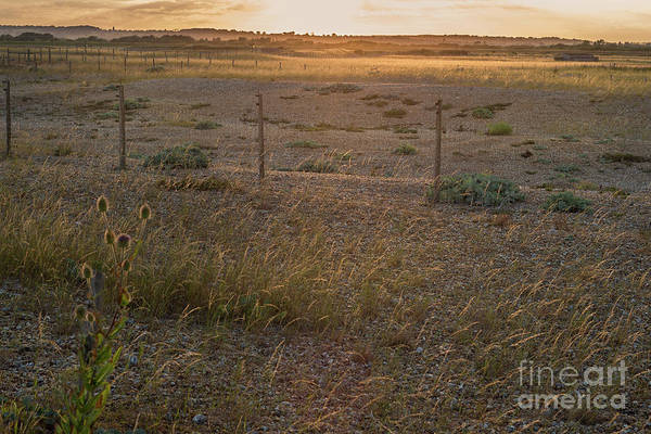 Photograph - Sunset On The Shingle by Perry Rodriguez