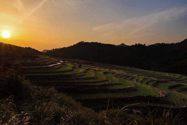 Photograph - Sunset On The Terraces by William Dickman