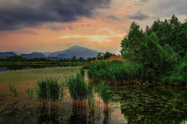 Photograph - Sunset Over Alserio's Lake by Roberto Pagani