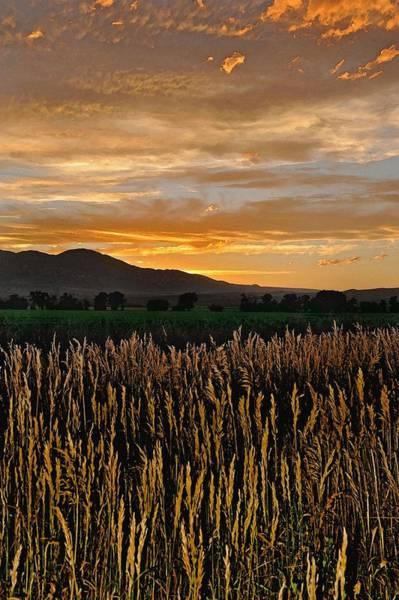 Photograph - Sunset Over Beartooth by Amanda Smith