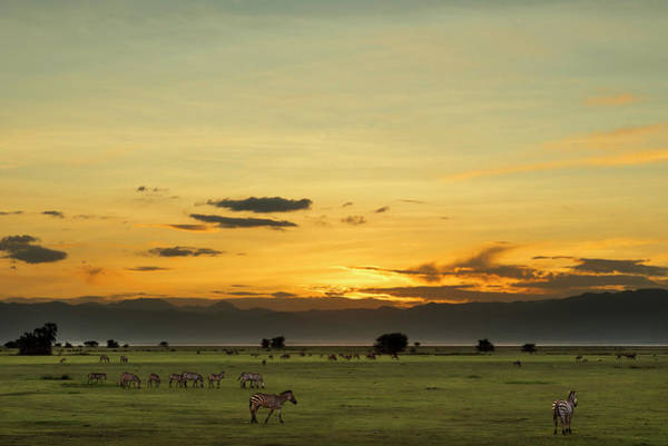 Photograph - Sunset Over Lake Manyara National Park by RicardMN Photography