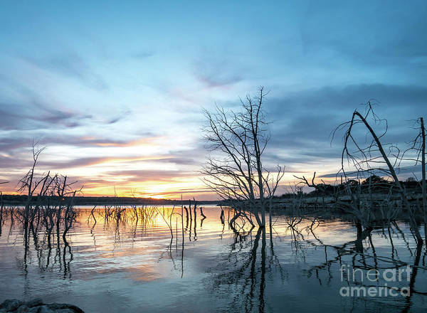 Photograph - Sunset Over Large Texas Lake With Dead Trees Sticking Out Of The by PorqueNo Studios