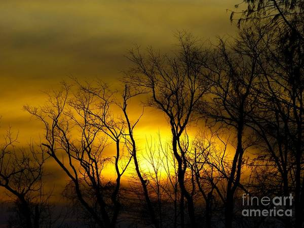Photograph - Sunset Over Our Free Land by Donald C Morgan