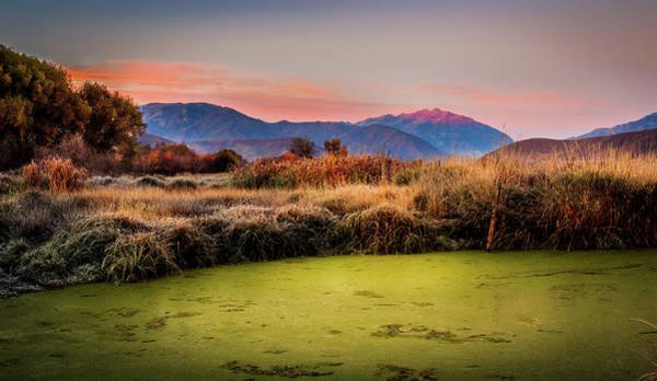 Photograph - Sunset Over The Duck Marsh by TL  Mair
