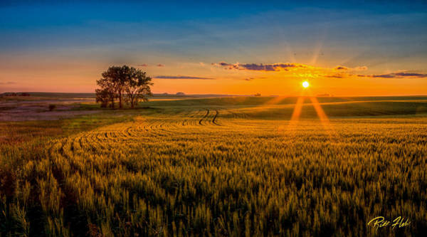 Photograph - Sunset Over The Fields by Rikk Flohr