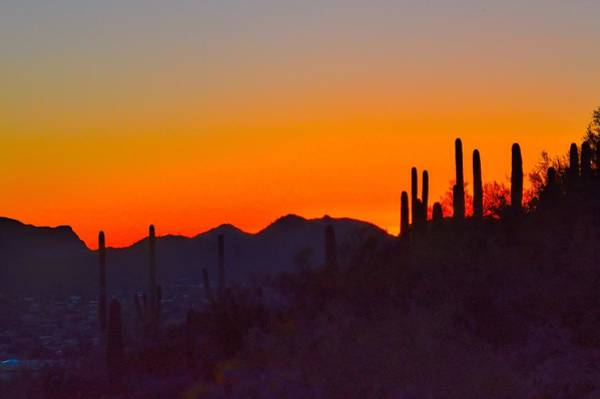 Photograph - Sunset Over Tucson Arizona by Diana Mary Sharpton