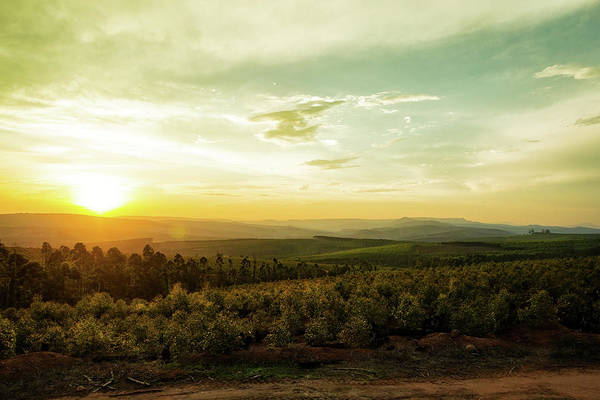 Wall Art - Photograph - Sunset Over Valley In Mpumalanga South Africa by Susan Schmitz