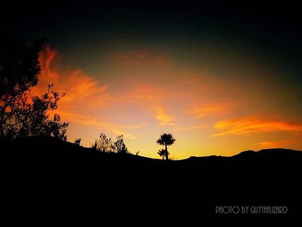 Sunset - Palm Mountain Art Print