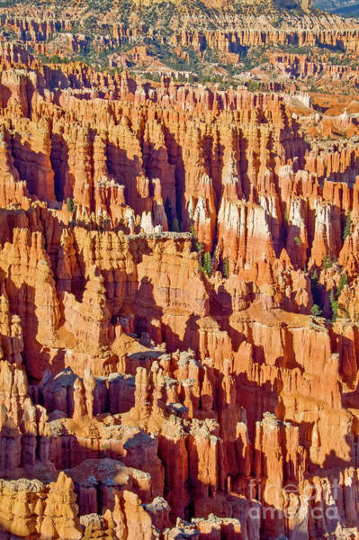 West Point Photograph - Sunset Point Bryce Canyon by Delphimages Photo Creations