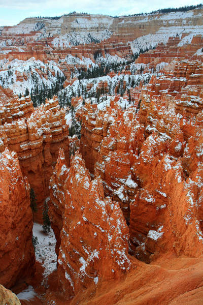 Photograph - Sunset Point In Bryce Canyon by Pierre Leclerc Photography
