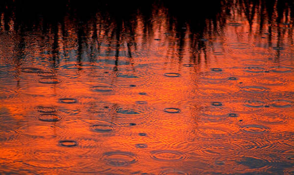 Photograph - Sunset Rain On Water by Bob Coates