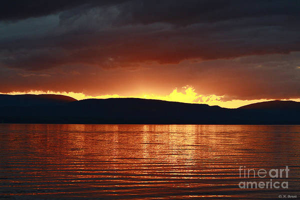 Photograph - Sunset Red by Deborah Benoit