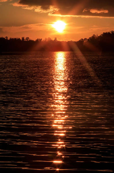 Photograph - Sunset Reflections by Bonnie Follett